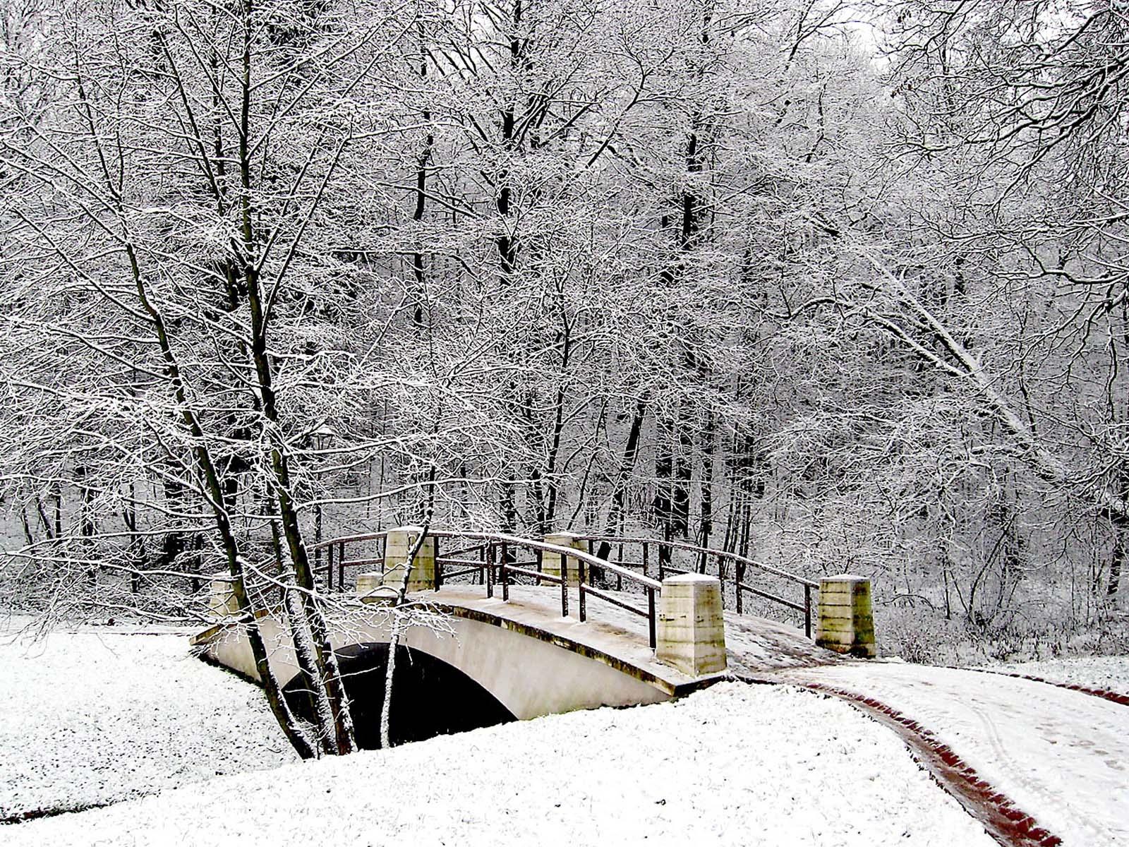 Creative choices interior s no white christmas for Sfondi paesaggi invernali per desktop